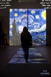 Van Gogh ~ The Experience
