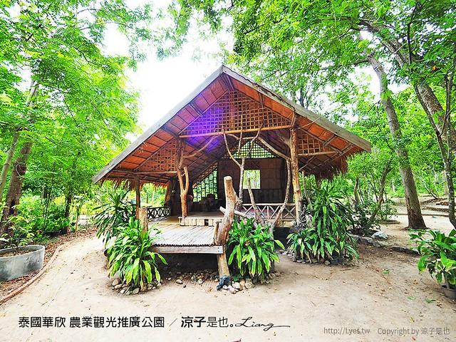 泰國華欣 農業觀光推廣公園 48