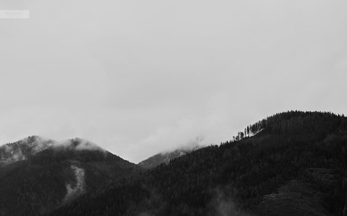 trees mist mountain mountains alps monochrome misty fog forest landscape grey austria landscapes österreich haze nebel foggy nebula monochrom alpen landschaft greysky landscapephotography ingrey waftsofmist desomnis