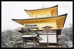 日本京都-金閣寺-雪.60