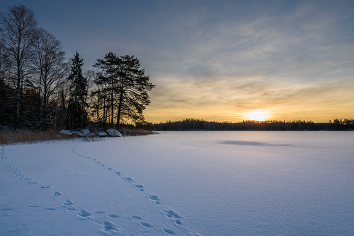 winter snow ice sunrise nikon d750 footsteps sverige 24120 uppsalalän