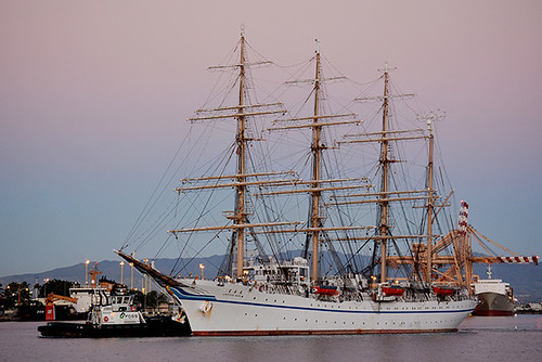 Nippon Maru shifting
