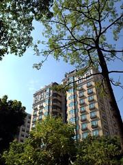 Building Blue Sky Trees at 勤美誠品綠園道 Park Lane