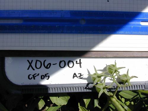 X06-004 CF05 Fr1