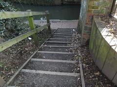 Chinn Brook Nature Reserve - Stratford-on-Avon Canal - steps