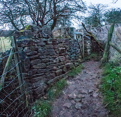 Through the Gate, Cotswolds, Gloucestershire