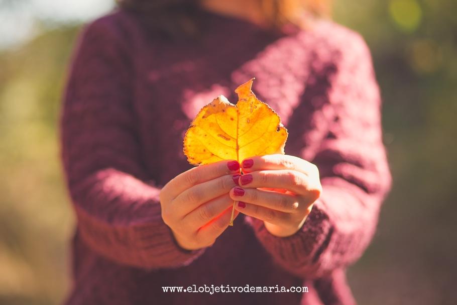 Bokeh de otoño