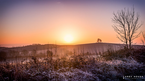 winter sunrise landscape dawn frost sony frosty wittenhamclumps southoxfordshire barrowhill a99 sonyalpha andyhough slta99v andyhoughphotography