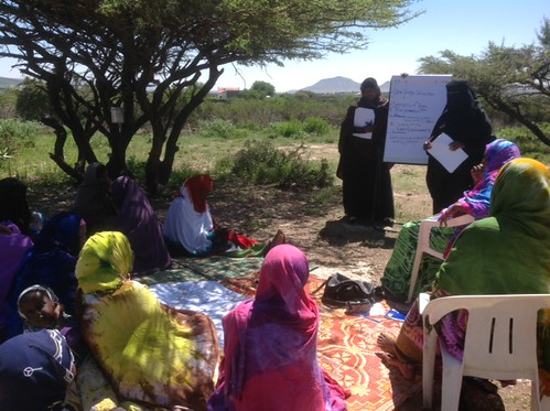 ISTVS PRA data collection with female community members in Sheikh (Somaliland)