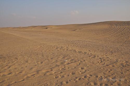 【写真】2014 世界一周 : ドバイ・砂漠(1日目)/2014-12-17/PICT6680