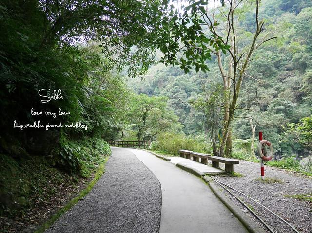 烏來景點內洞森林遊樂區 (3)