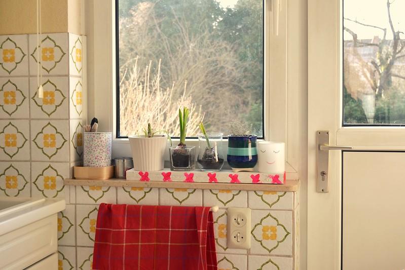 ventana de la cocina