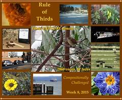 08-2015-Rule of Thirds