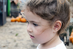 Lena at the Pumpkin Patch 8