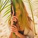 palms by Julia Trotti