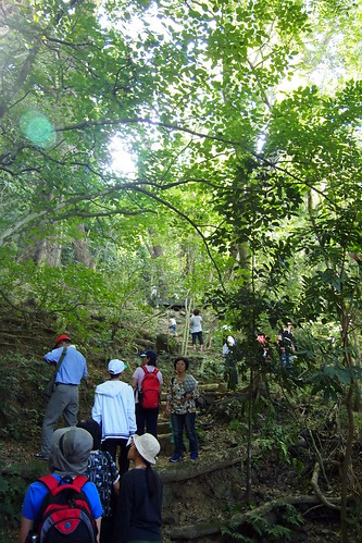 雙溪母樹林,過去政府規劃的美濃水庫預定地,水庫計畫擋下後,成為珍貴的生態資源熱區。