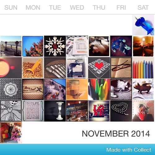 November 2014 Photo A Day Challenge
