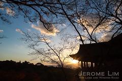 JeromeLim-2687
