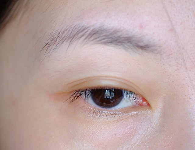 before Shu Uemura Hard Formula Seal Brown