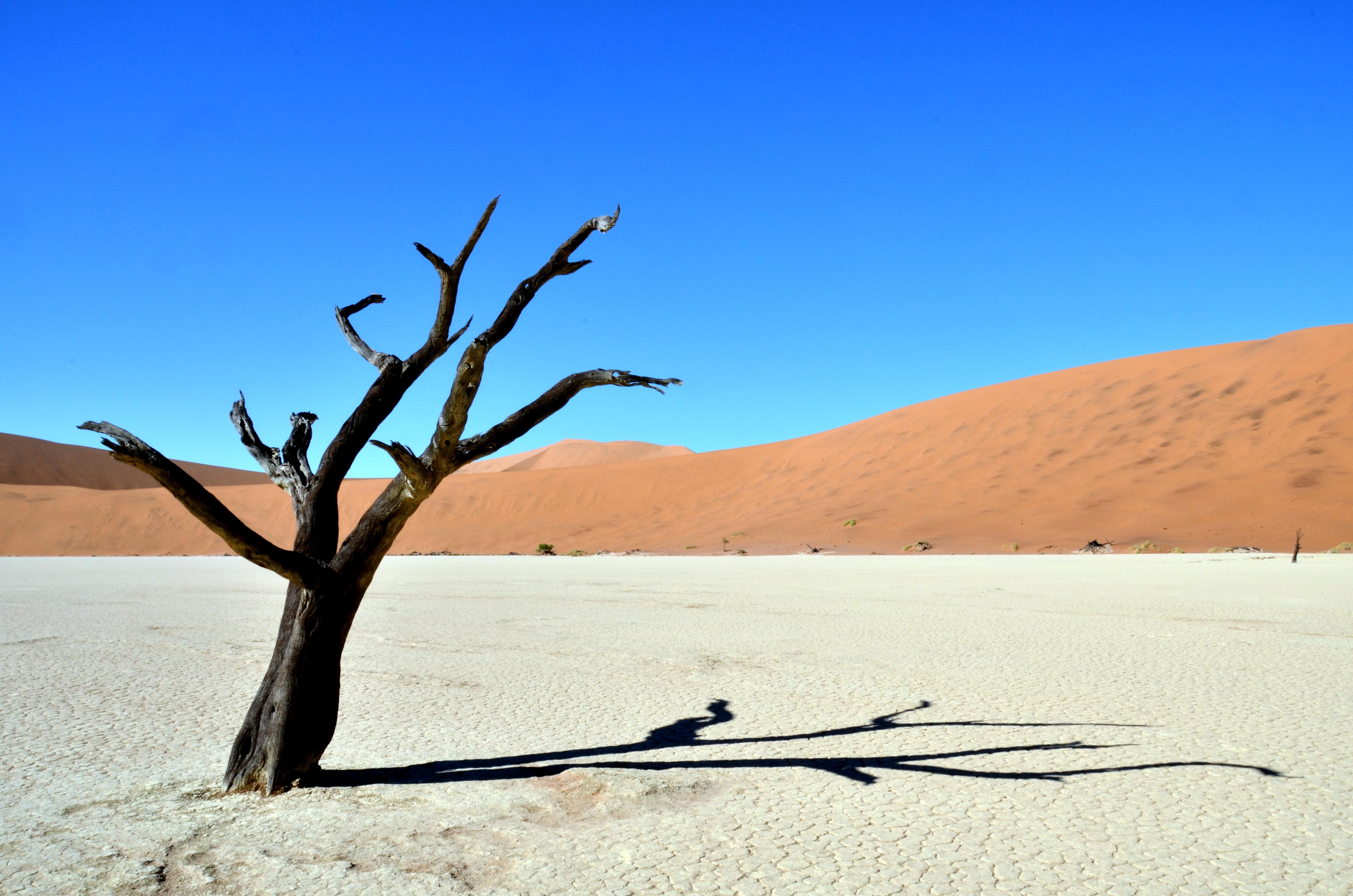 Namibia (402)