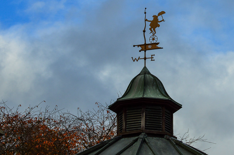 Toad Hall Disneyland Paris Weathervane