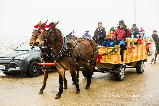 20141213-HolsteinChristmasParade-WM-10