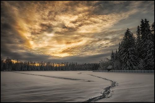 trees winter sunset sky snow clouds barn forest snowshoe vinter tracks himmel skog snö lada hdr träd solnedgång moln spår rundbalar snösko
