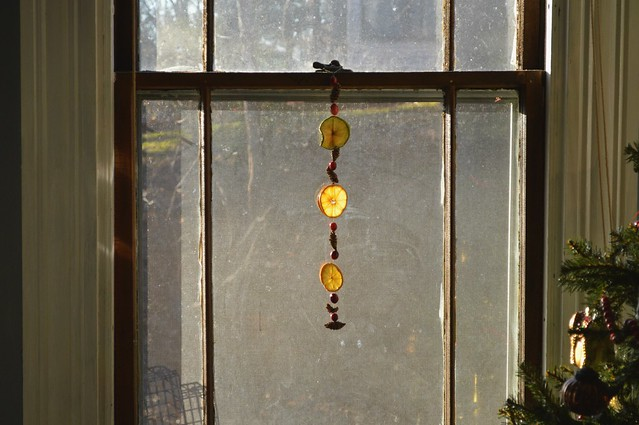 Natural Sun Catchers