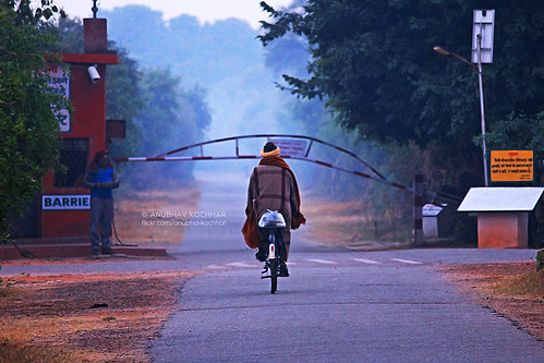 road park morning man bird bicycle canon eos early alone cyclist human national barrier lonely bharatpur sanctury 60d soloindiantraveller airingbyway koladeo