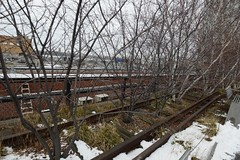 日, 2015-01-11 12:56 - High Line