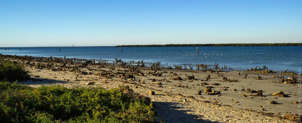 20141220 North Haven Beach-6