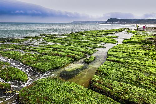 Seaweed Stone Trench of Laomei Coast