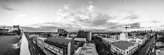 Camperdown City Skyline Panorama B&W
