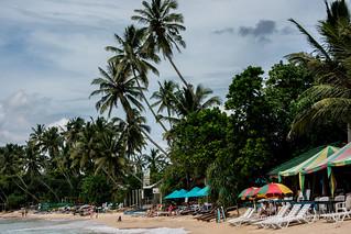Sri Lanka. Mirissa.
