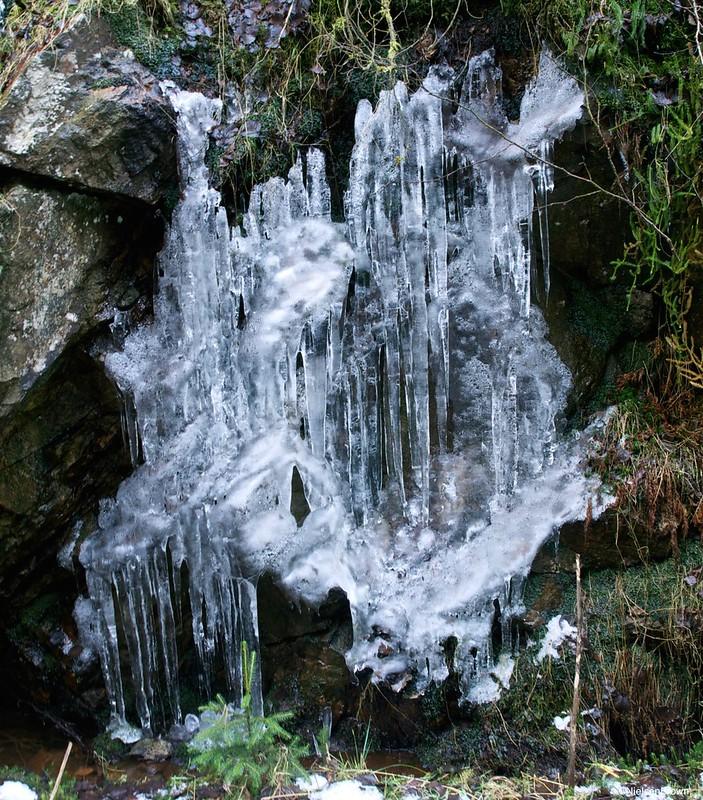 Ice-imp