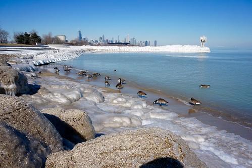 winter lake chicago ice beach sunny lakemichigan lakeshore lakefront winterwonderland burnhampark iceformations 31ststreetbeach chiberia