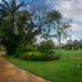 Honda LPGA Golf Tournament-Pattaya