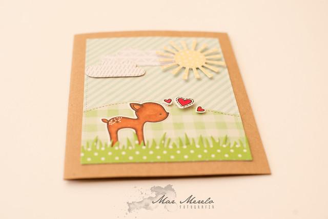 Card +1