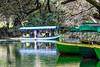Makedonija - Ohrid-15