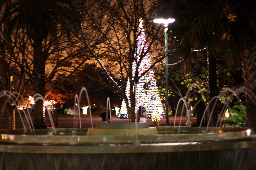 Charleston Water fountain and Christmas tree