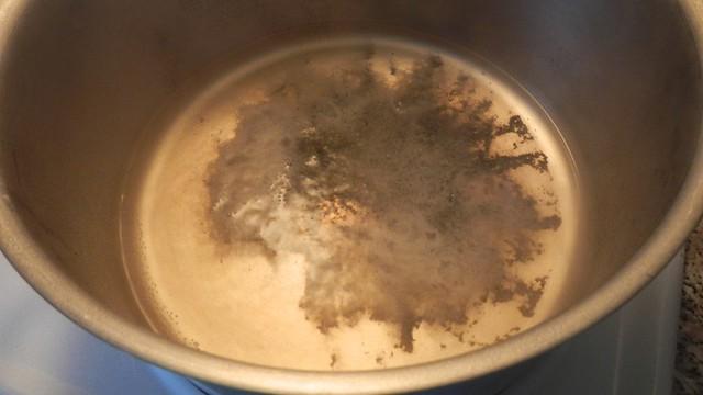 Scrubby Pot 3