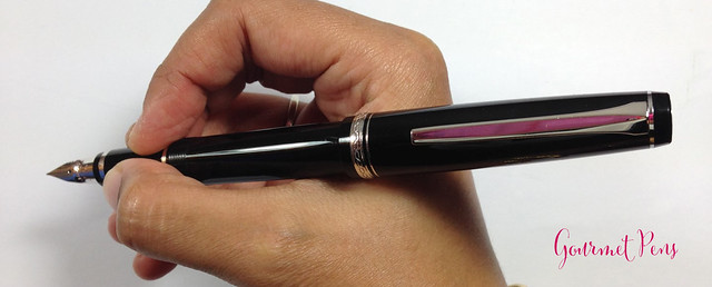 Review Pilot Elabo Fountain Pen - Soft Extra-Fine @JetPens @PilotPenUSA (11)
