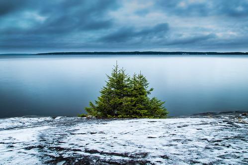 longexposure winter lake snow blur tree water rock suomi finland landscape still scenery afternoon kallio cloudy overcast calm filter lumi talvi puu tampere spruce maisema järvi cokin näsijärvi kuusi tyyni kauppi ndgrad rauhallinen pirkanmaa pitkävalotus iltapäivä