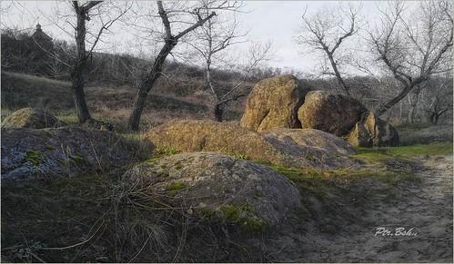 park nature landscape island europe reserve ukraine zaporozhye khortytsya