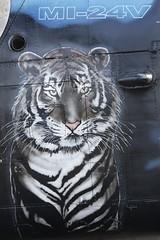 Czech Mil Mi-24V - 7353  231th Squadron - Tiger starboard