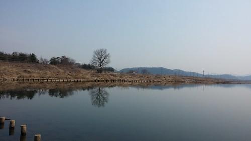 공릉천 봄풍경