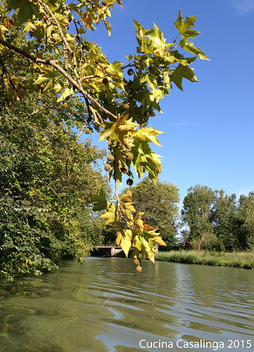 Canal du Midi 4