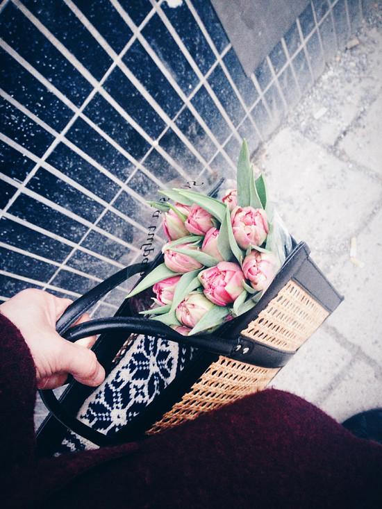februari_liten