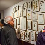 Le lundi, je tourisme ! Musée Gassendi
