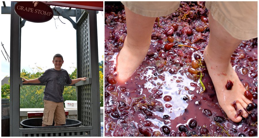 christopher grape stomp